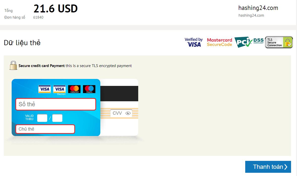 Điền thông tin thẻ visa của bạn và ấn thanh toán
