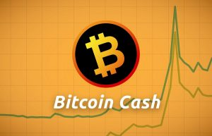 Bitcoin Cash là gì ? Hướng dẫn mua Bitcoin Cash bằng Việt Nam Đồng