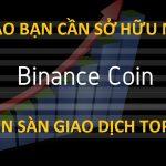 Vì sao bạn cần phải trữ ngay đồng BNB Coin ? Phân tích tiềm năng và lợi ích khi trữ đồng Binance Coin (BNB)