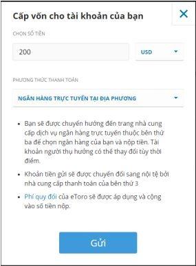 Điền số tiền và ngân hàng trực tuyến tại địa phương nạp tiền etoro