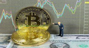 Bạn nên đầu tư bao nhiêu tiền vào Bitcoin ?