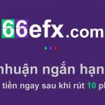 Giới thiệu và đánh giá sàn giao dịch quyền chọn nhị phân 66efx
