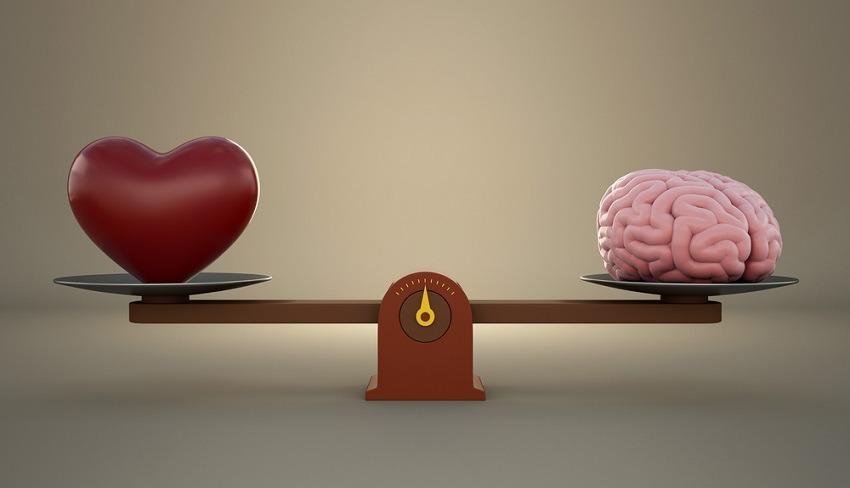Ứng dụng đo chỉ số cảm xúc thị trường tiền điện tử