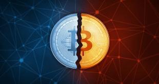 Bitcoin Halving là gì? Mọi thứ bạn cần biết về Bitcoin Halving