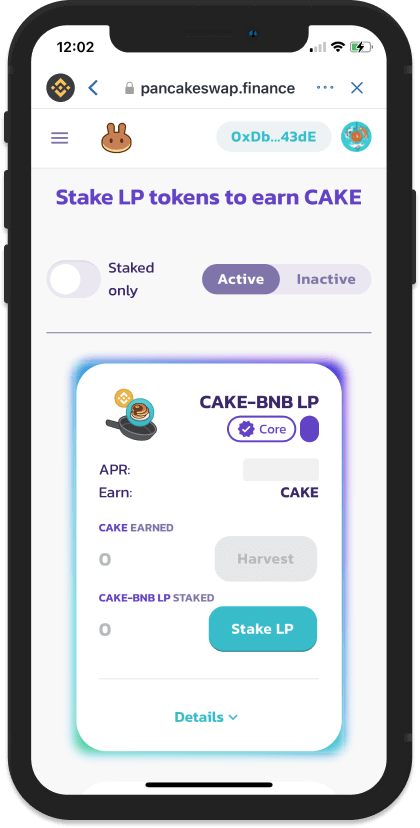 Tiến hành stake token vào pool CAKE-BNB LP